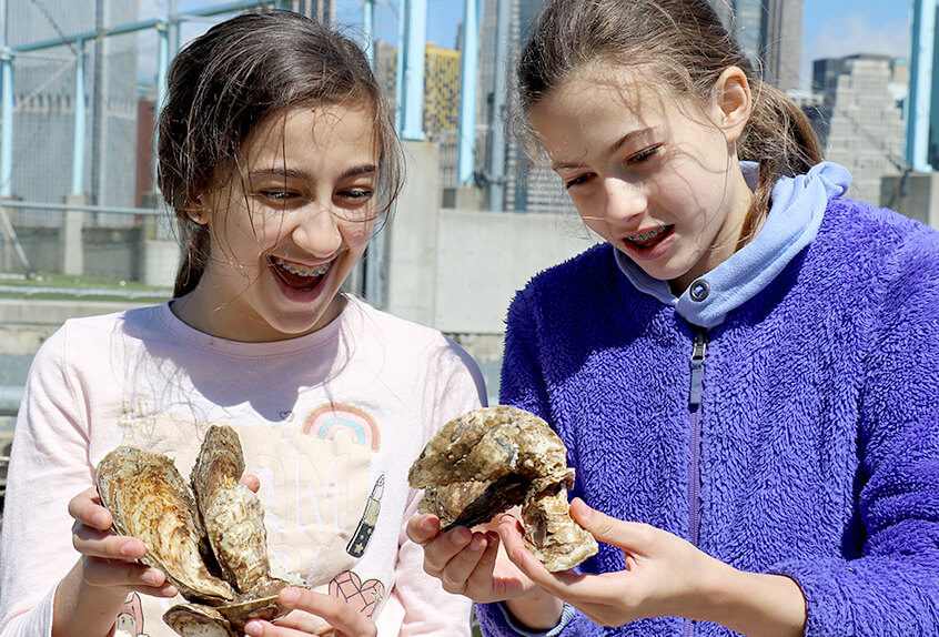 billion oyster project 2 girls looking at oysters