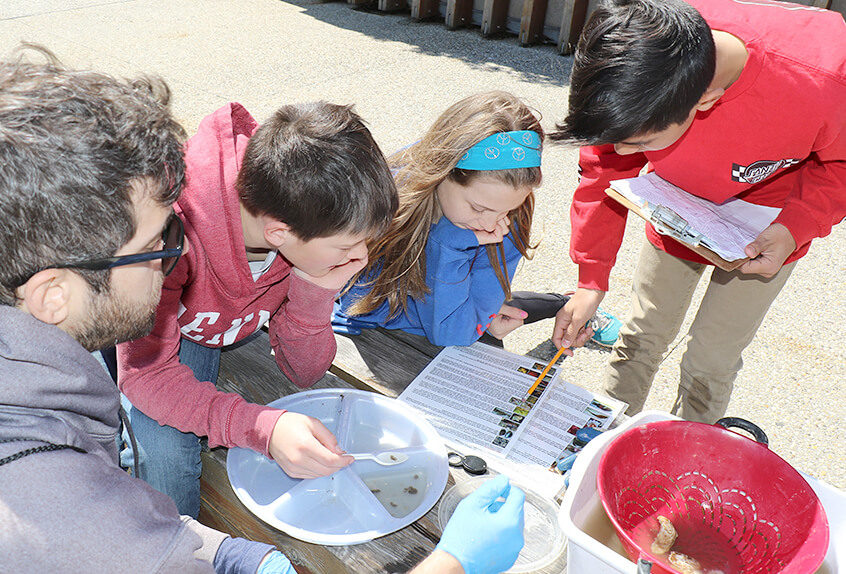 billion oyster project students and teacher recording data