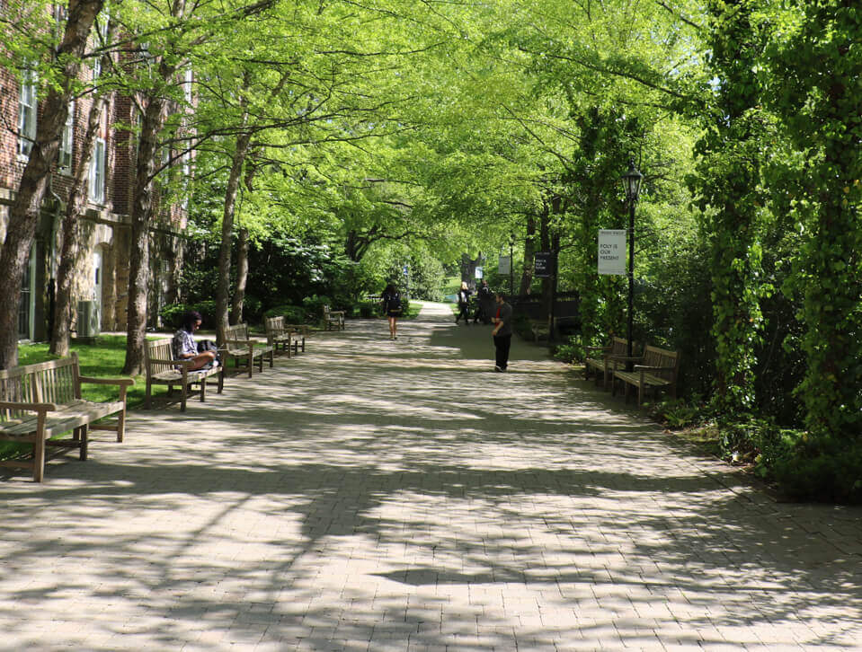 Poly Prep tree lined walkway on Dyker Heights Campus