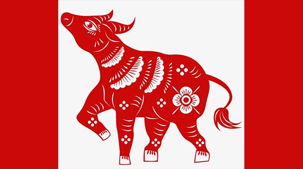 Lunar New Year ox