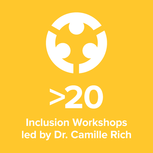 stat inclusion workshops